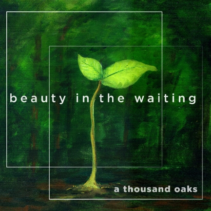 Beauty in the Waiting album art